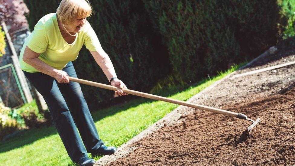Raking the garden