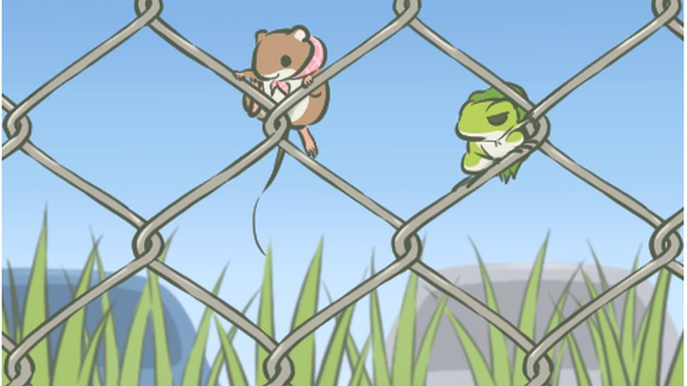 The frog is climbing fence with its rat friend