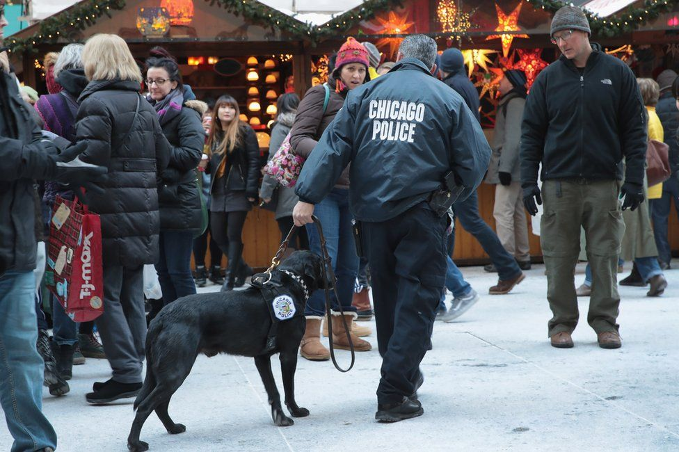 A police dog checks for explosives during a patrol at Christkindlmarket Chicago, a German-themed Christmas market in Chicago, Illinois, 20 December