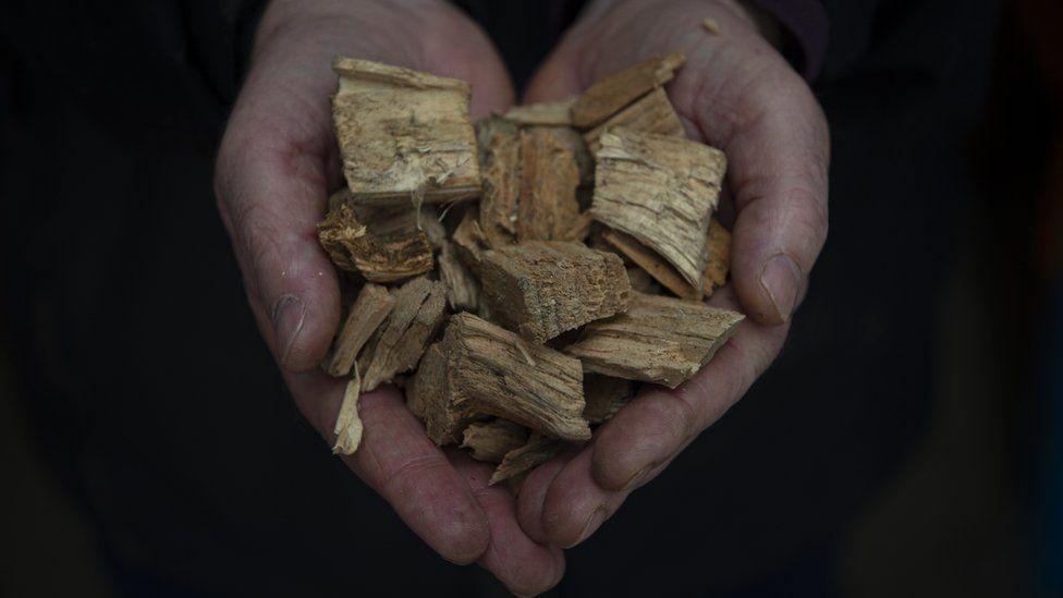 Hand holding woodchips
