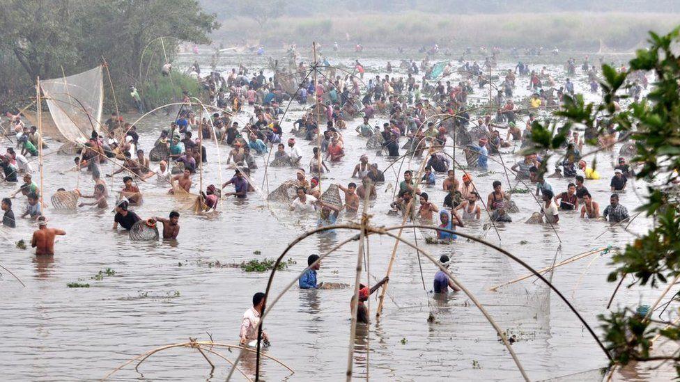 Villagers participate in community fishing as part of Bhogali Bihu celebrations at Goroimari Lake in Panbari, India, 13 January 2021.