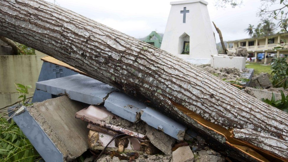 A tomb is crushed by a falling tree in Les Cayes, southern Haiti