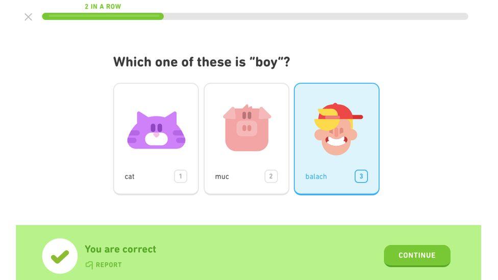 Duolingo Gaelic course