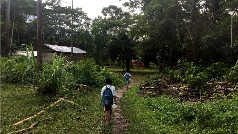 Schoolchildren walk along small path to the small school house in Shipetiari