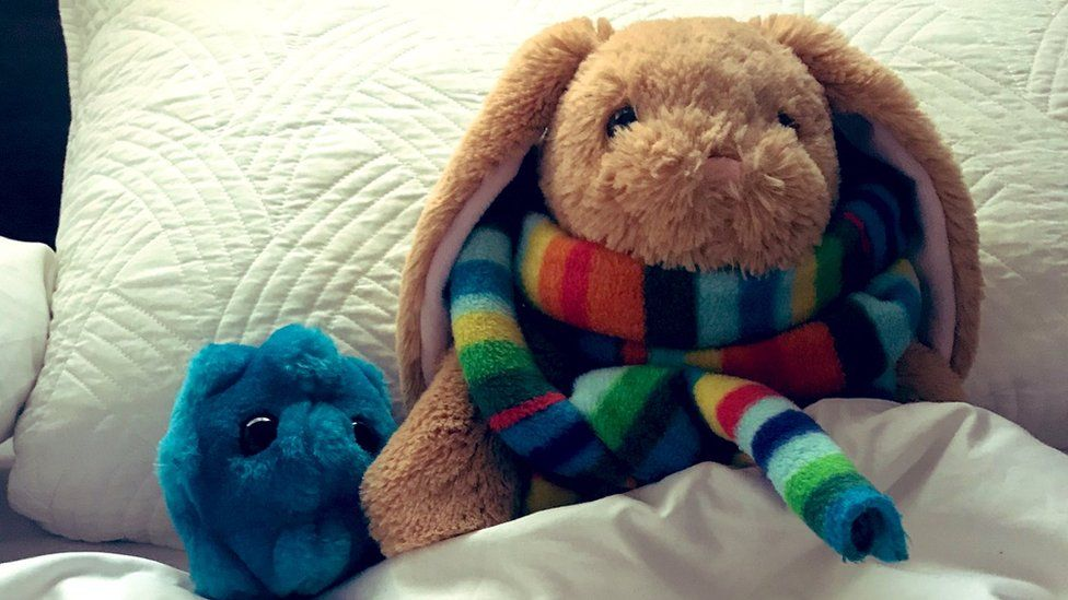 Two stuffed toys tucked up in bed