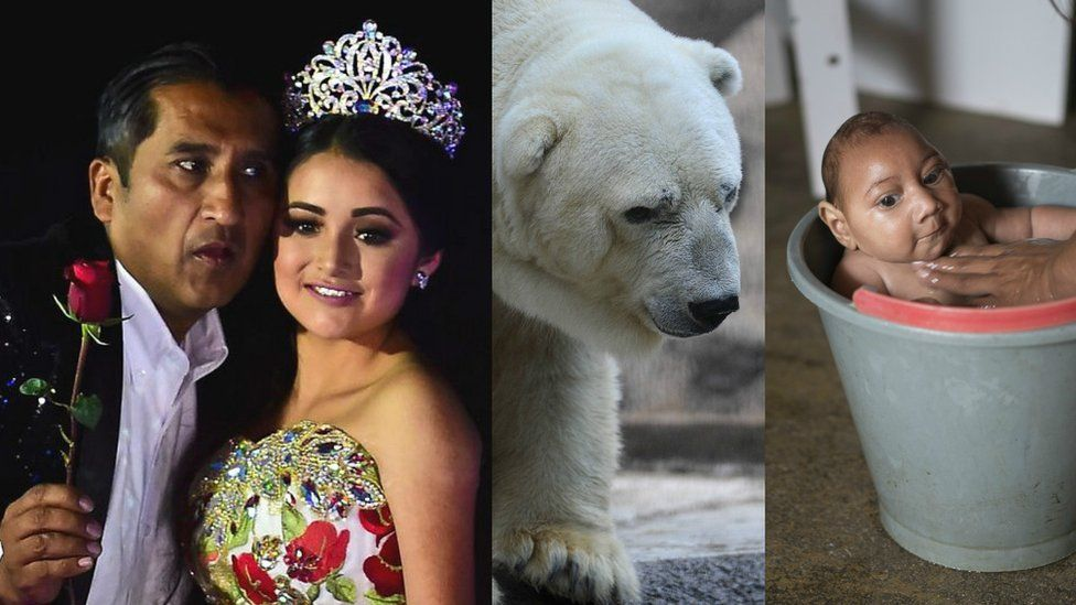 Las historias de América Latina que internet ayudó a hacer virales en 2016