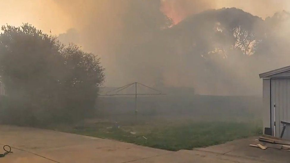 Thick smoke from a bushfire engulfs a yard in Adelaide