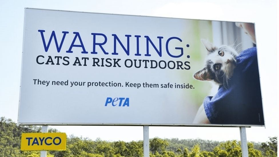 PETA billboard that says 'Warning: cats are at risks outdoors. They need your protection. Keep them safe inside.'
