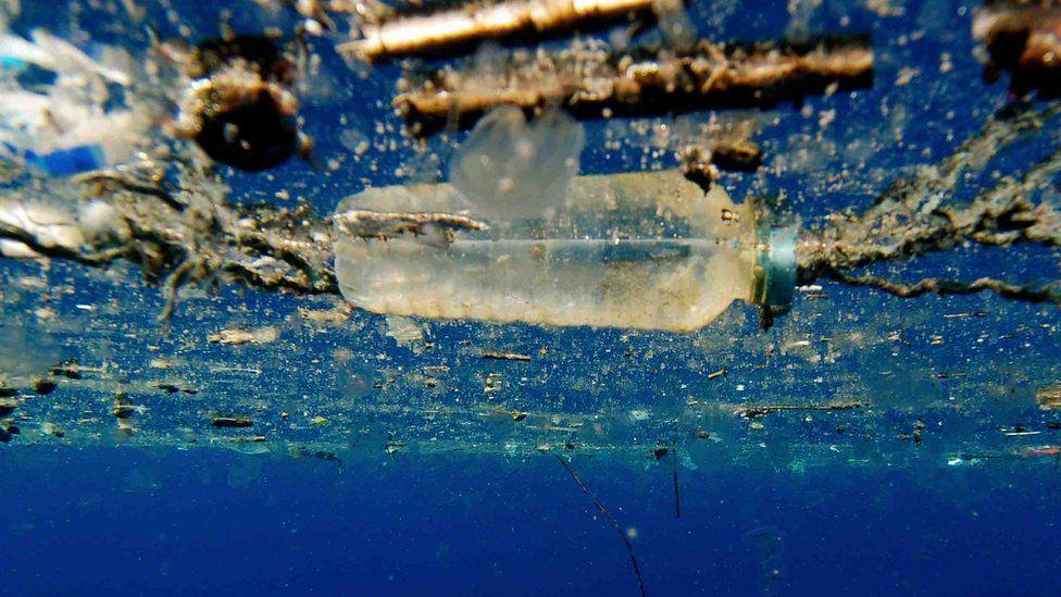 A plastic bottle floating in sea water