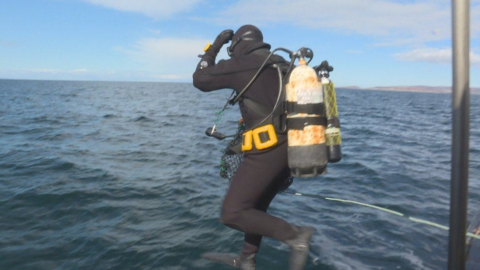 Diver going into the sea