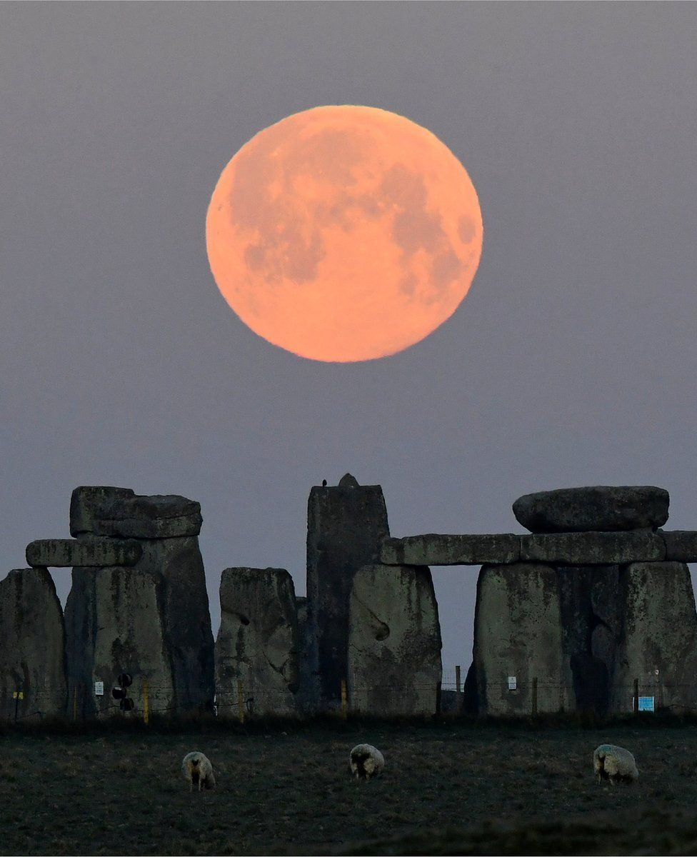 Sheep graze around the Stonehenge stone circle near Amesbury underneath the glowing moon