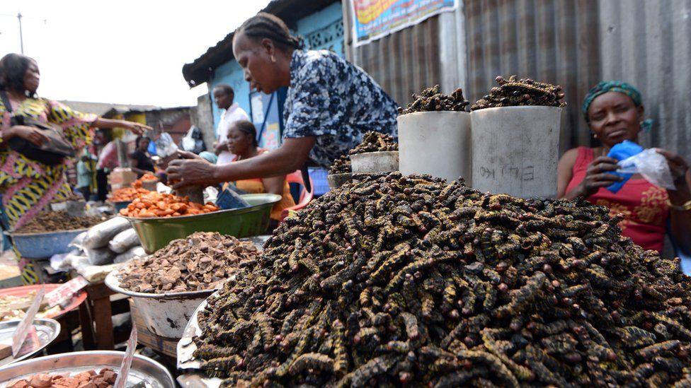 caterpillars on sale in Kinshasa