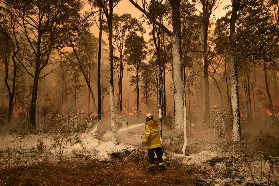Пожежник розпорошує антипірен