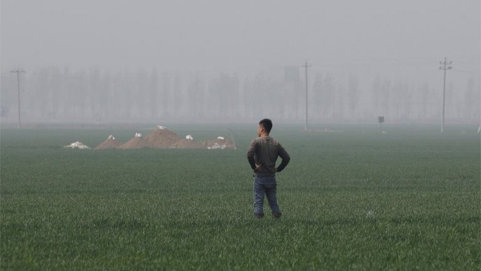 Man stands in a field in Rongcheng county, Hebei