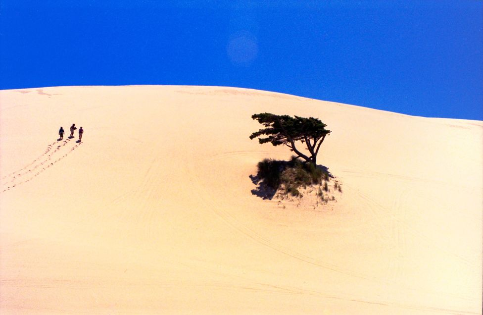 In the Sand Dunes Frontier Park, in Oregon, USA, three hikers trudge their way up a steep hill in the soft sand