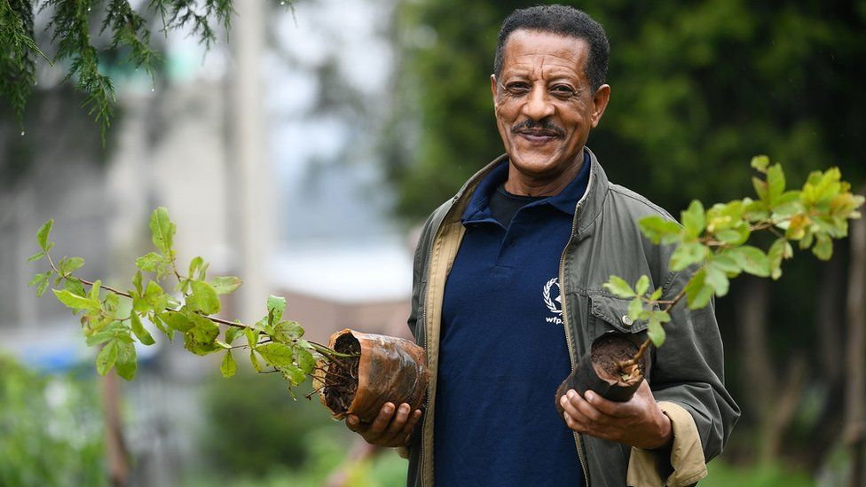 An Ethiopian man posing with tree seedlings during a national tree-planting drive in the capital Addis Ababa