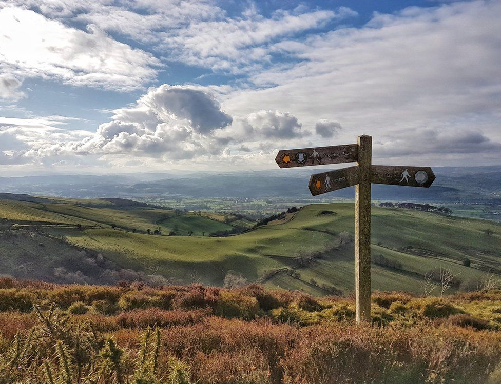 Signpost in the countryside