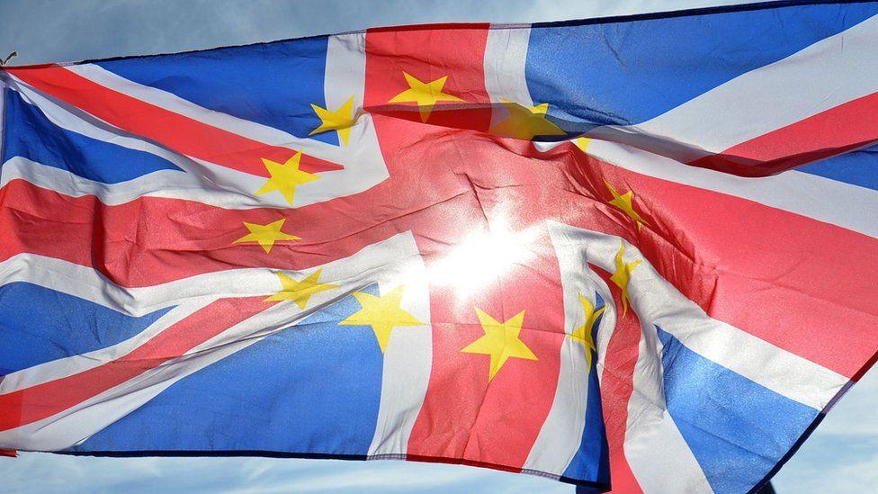 anti-Brexit flag