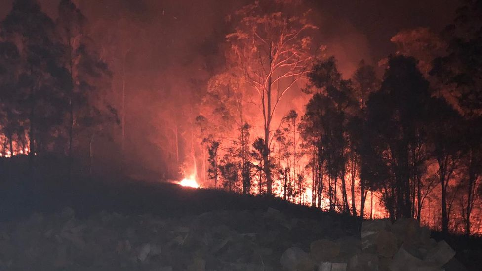 View of the fire on the Costigan's property at night