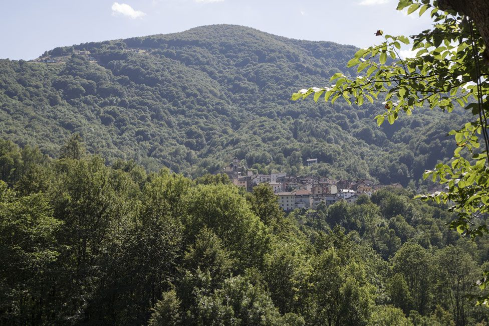 Gurro, and the forested hillside above it