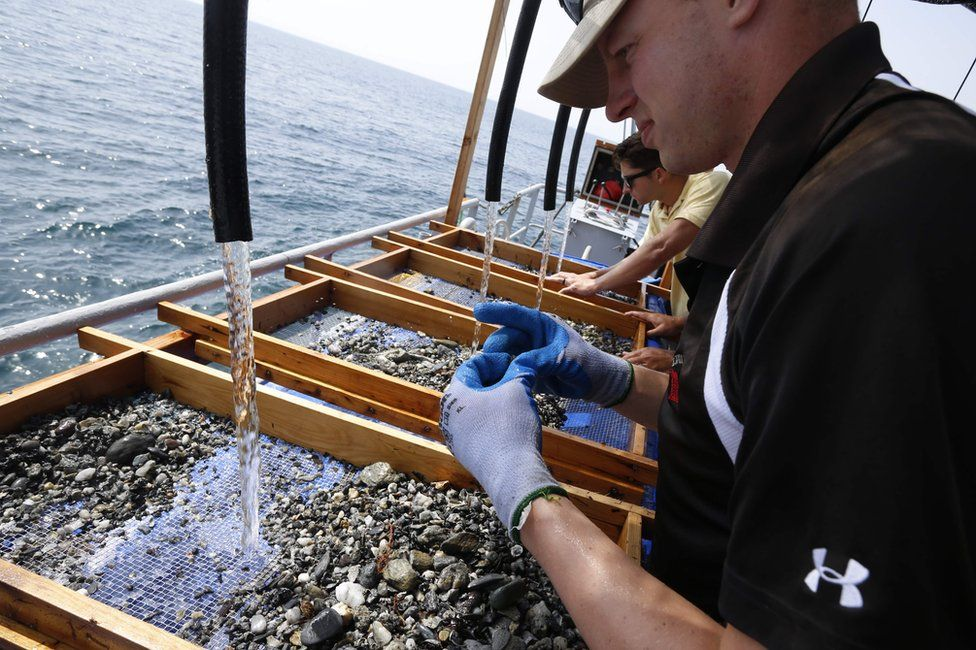 DPAA (Defense POW/MIA Accounting Agency) staff look for DNA and clews on wire screens on the French army mine clearance expert boat Pluton