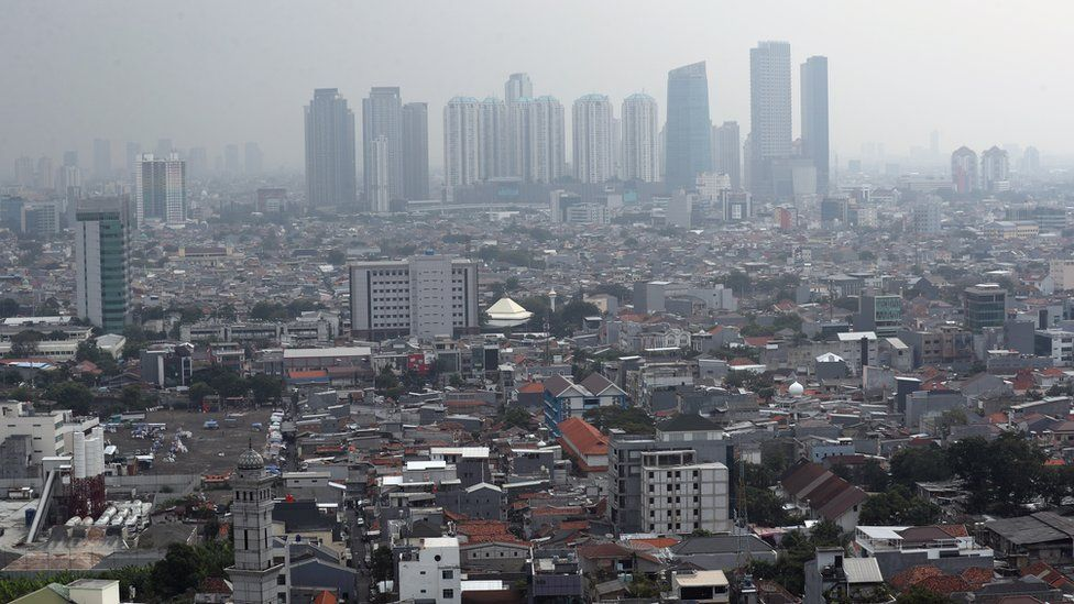 Indonesia picks Borneo island as site of new capital