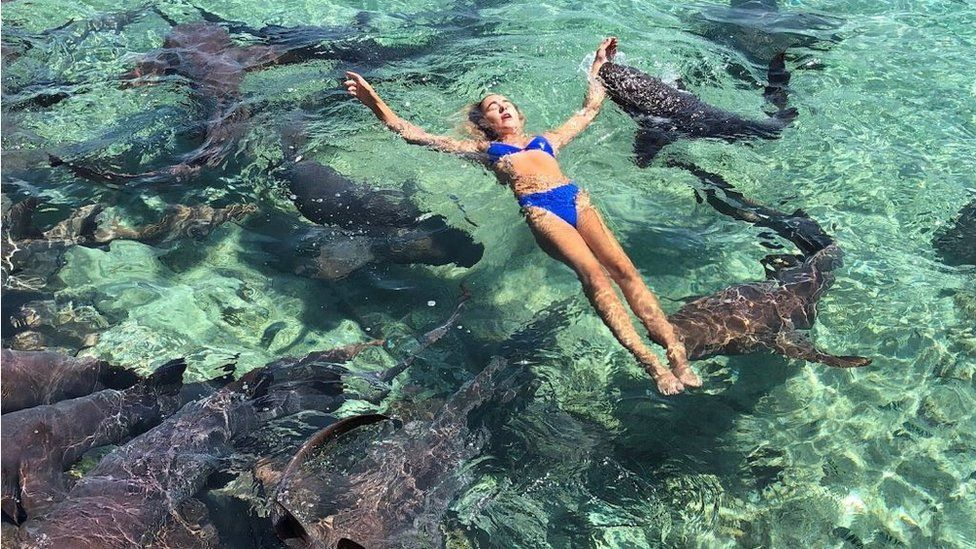 Katarina Zarutskie lying back in water, with shark visibly biting her arm