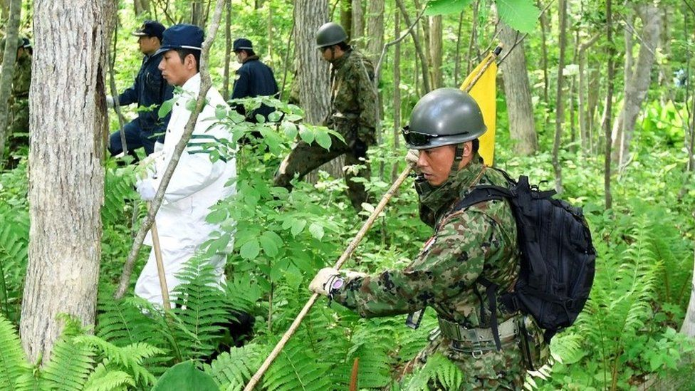 Searchers work through undergrowth in Hokkaido, Japan (2 June 2016)