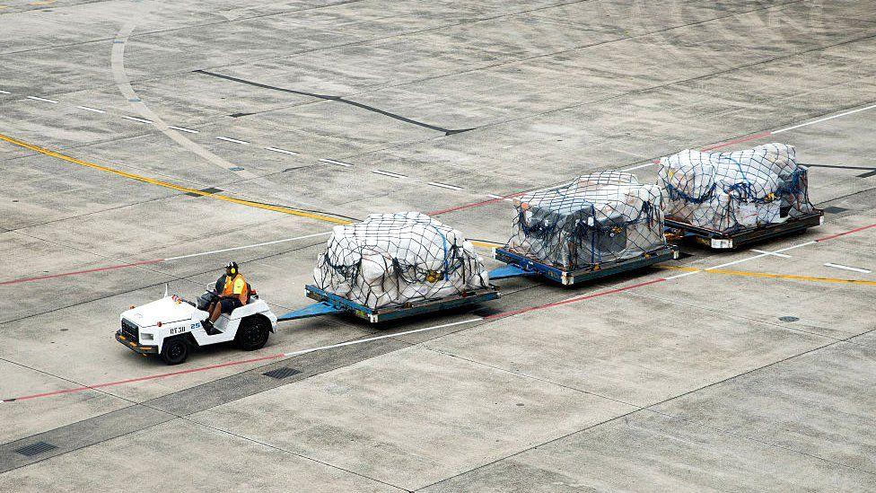 Kargo sedang dipindahkan di bandara
