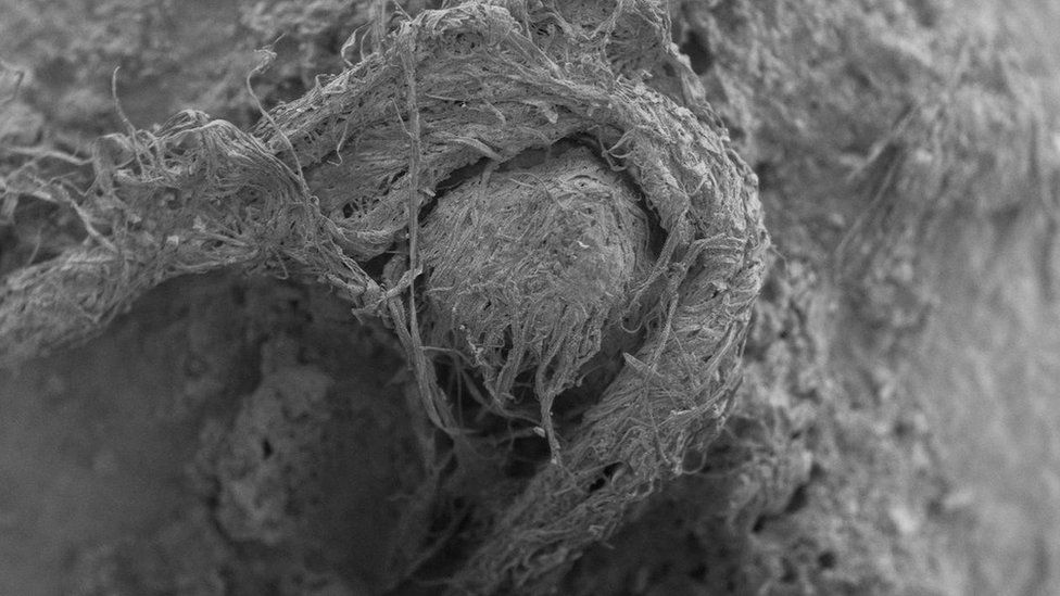 Handout photo issued by M-H Moncel/Histoire Naturelle de l'Homme Préhistorique showing a cord fragment discovered at the Abri du Maras archaeological site in France taken using digital microscopy