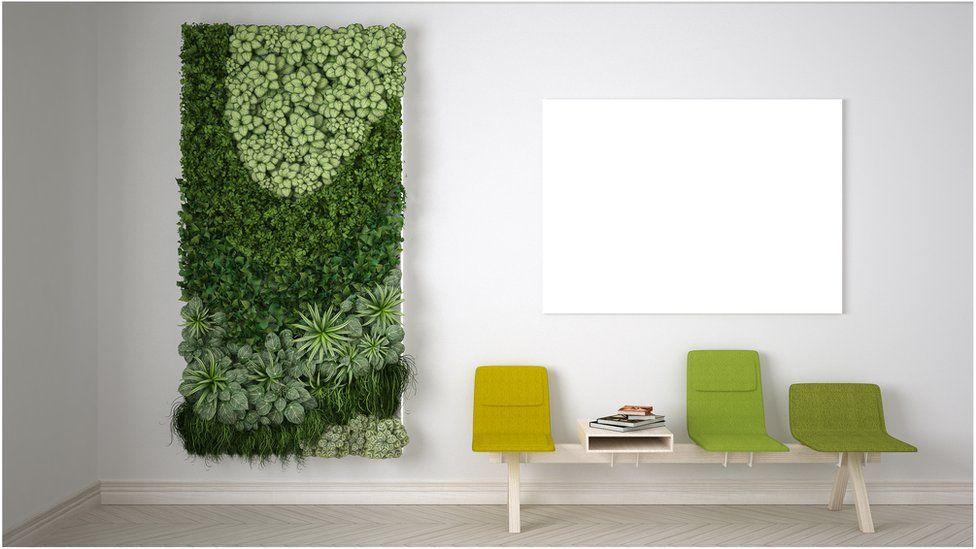 "A ""green wall"" or ""vertical garden"""