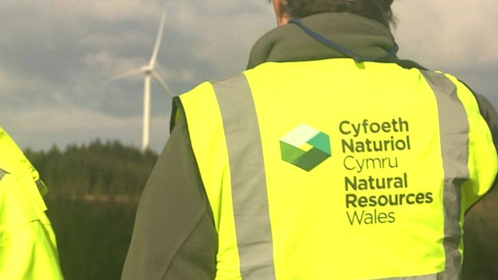 Natural Resources Wales staff