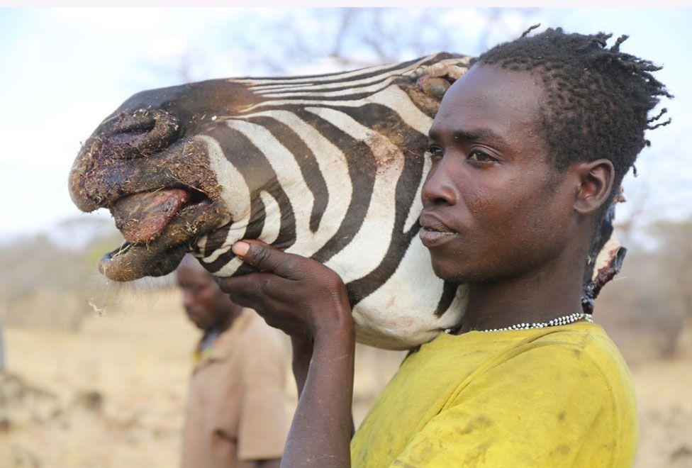 Homem hadza com a cabeça de uma zebra caçada