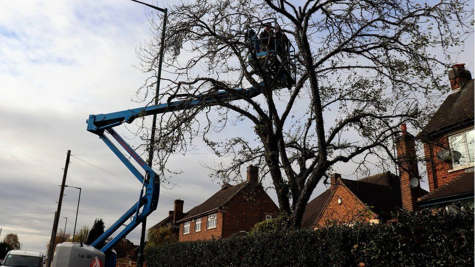 Andy Black used a cherry picker to add the lights to the top of the tree