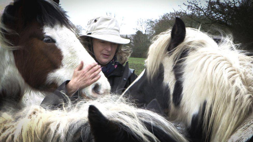 Robbie Bartington with three horses
