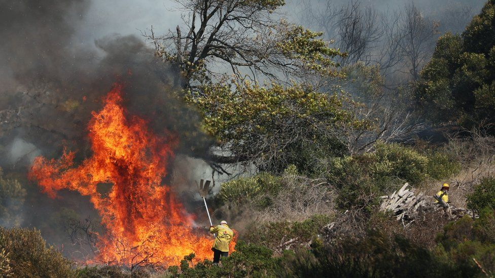 Table Mountain fire 'burns out of control' in Cape Town thumbnail