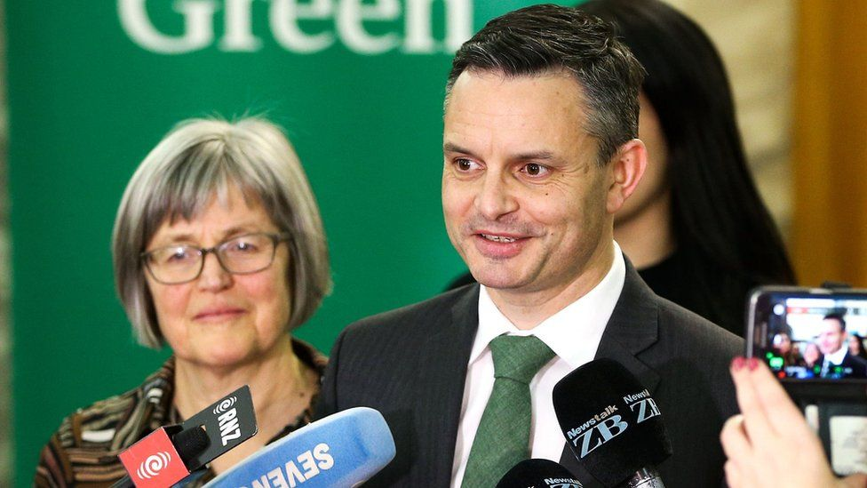 Leader James Shaw speaks during a Green Party press conference at Parliament on October 19, 2017 in Wellington, New Zealand.