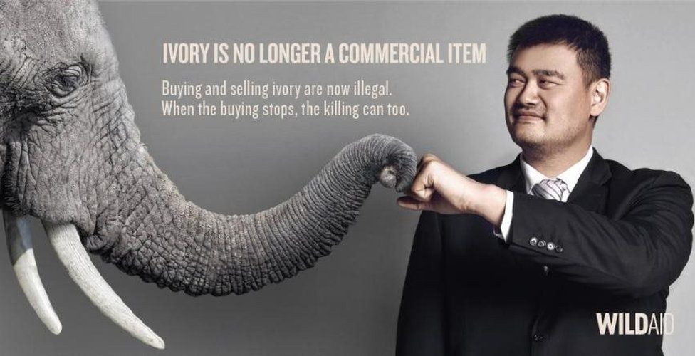 A WildAid poster featuring Yao Ming and an elephant