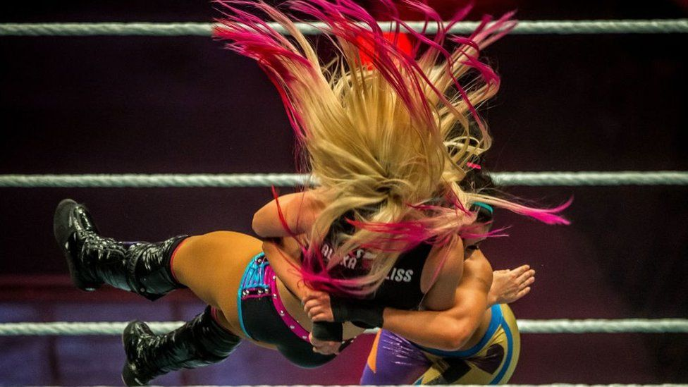 WWE wrestling bout