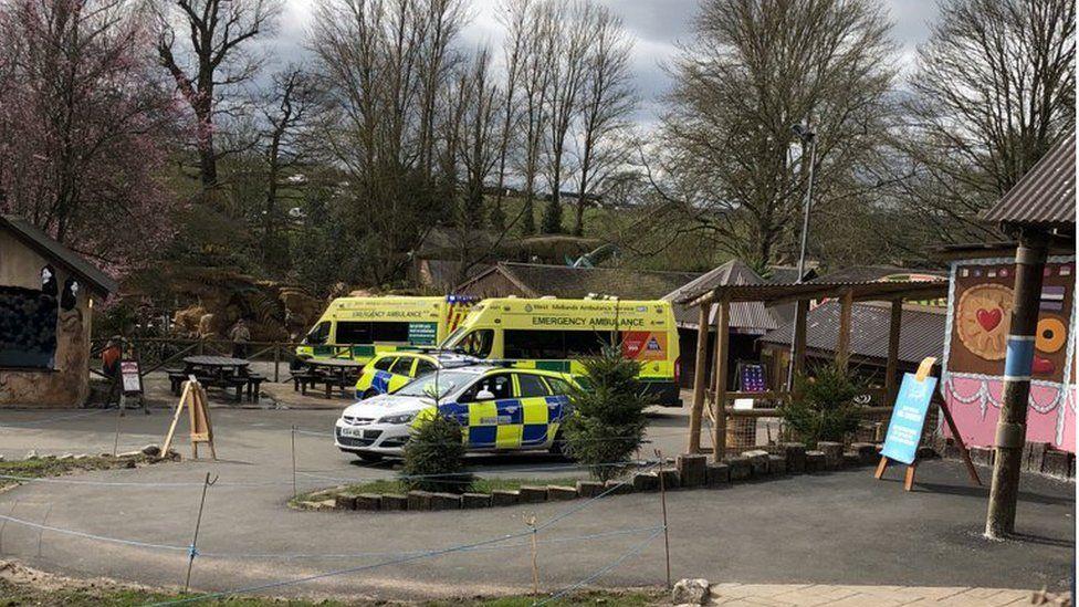Ambulances and police cars at the safari park