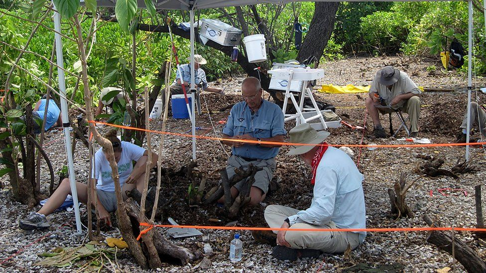 Ric Gillespie and his team excavating on Nikumaroro, where they believe Earhart's plane came down