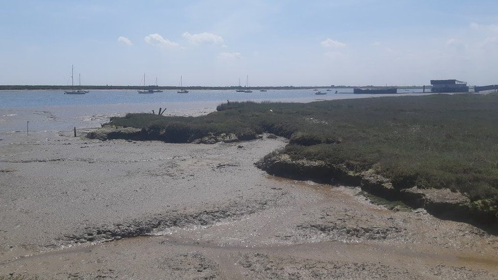 The shoreline at Paglesham, Essex, where the remains of The Beagle are thought to lie