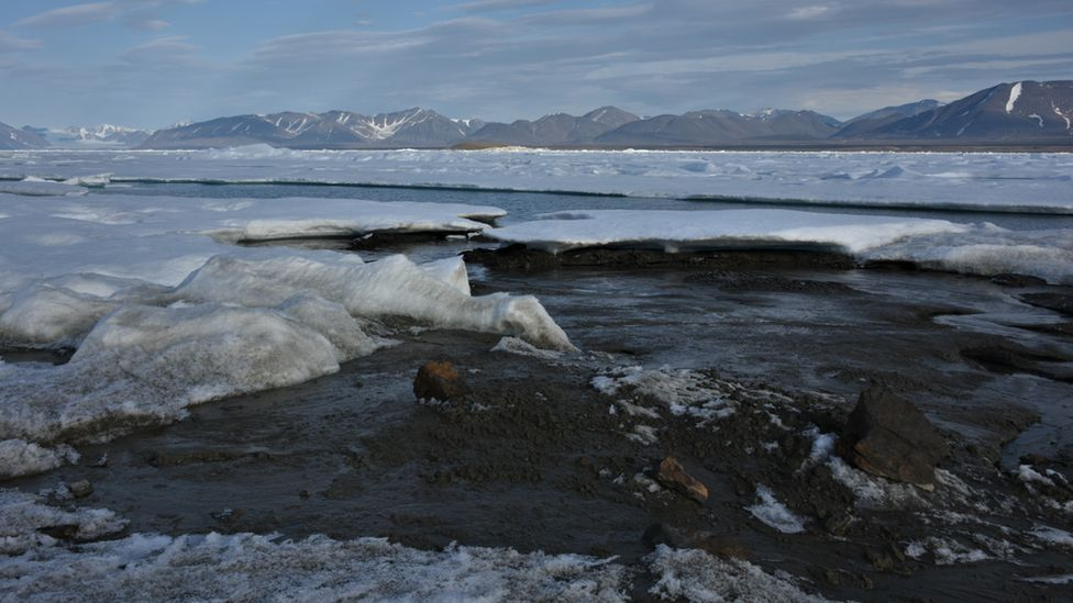 The newly-discovered island off Greenland's coast