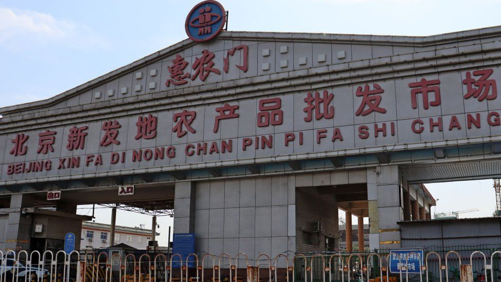 Xinfadi Market