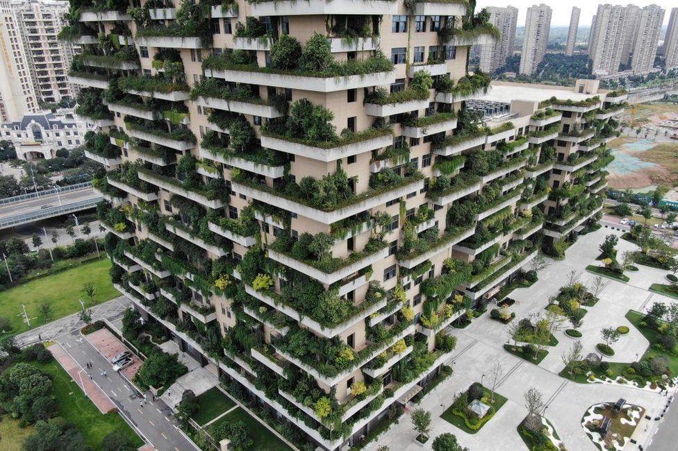 Por qué la arquitectura verde será fuente de millones de empleos (y cuáles son las profesiones con mayor demanda)