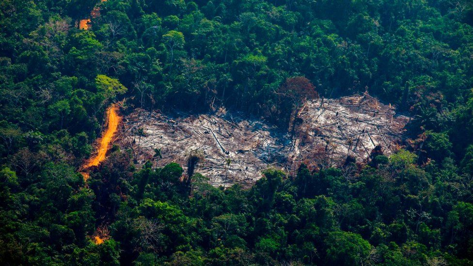 An aerial shot from 2019 of deforestation in the Amazon