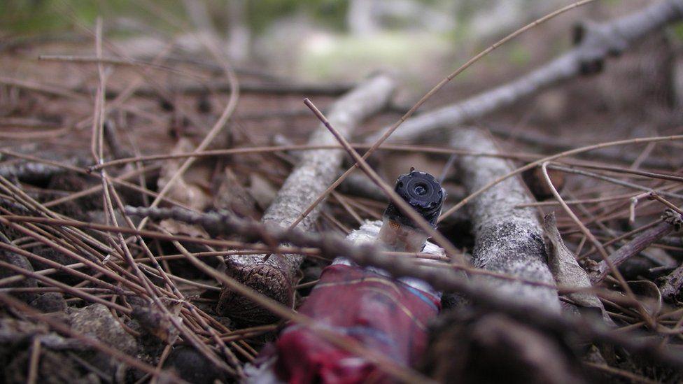 'crowcam' lying in undergrowth