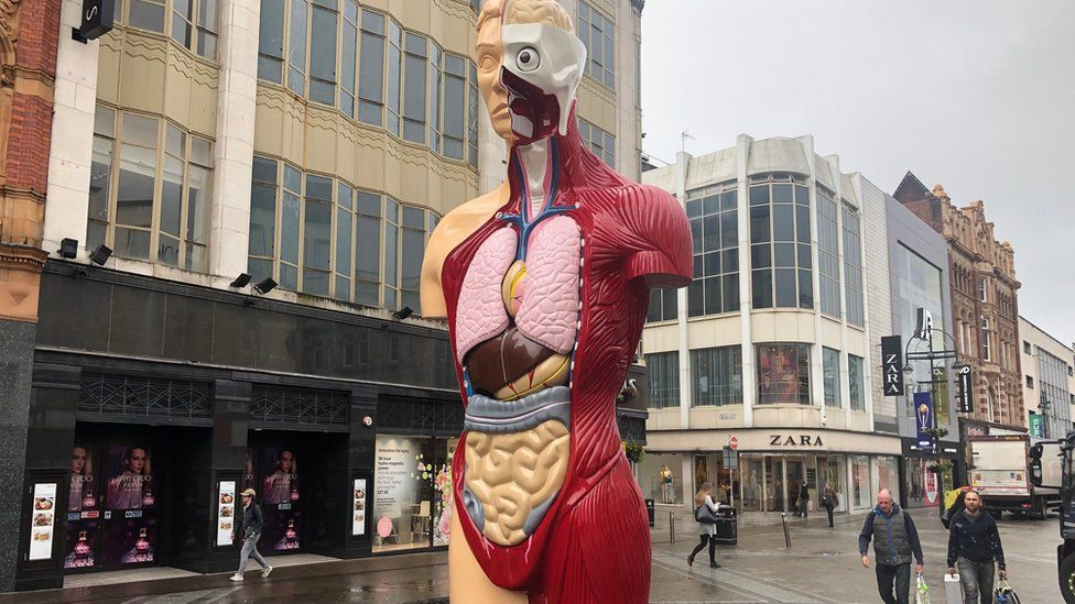 Hirst sculptures on display in Leeds city centre