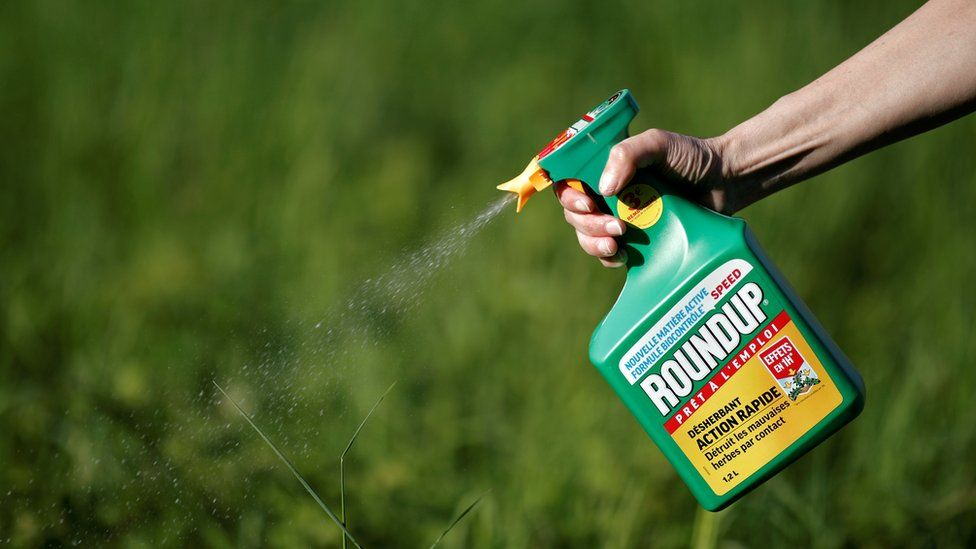 A hand extends into frame from the upper right, spraying a bottle of Roundup into a field