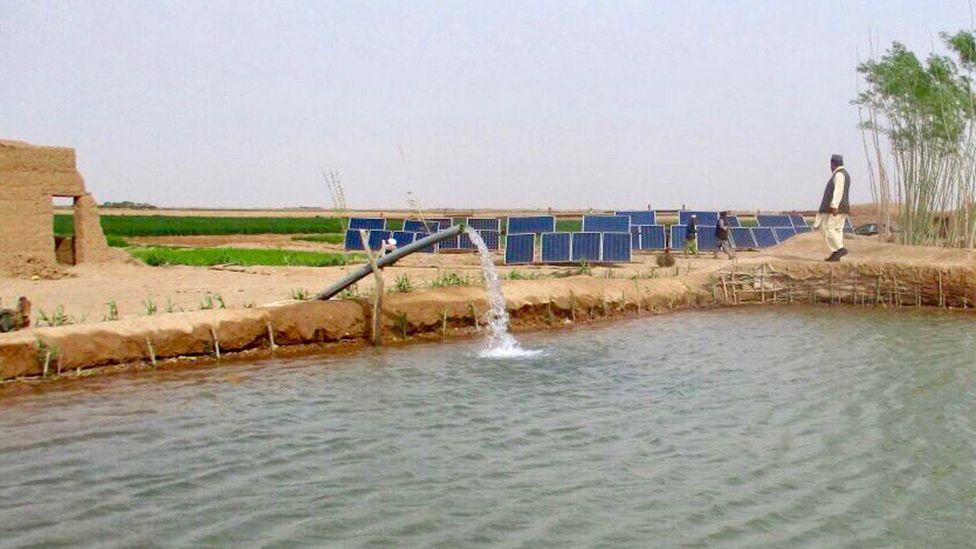 farmer irrigating